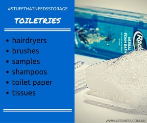 stuffthtneedstorage-toiletries